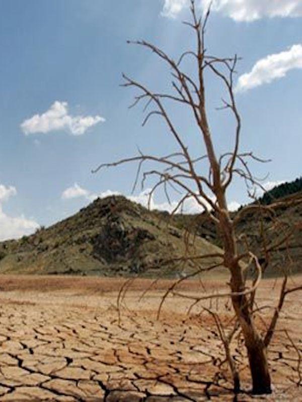 En busca de usos agrícolas del suelo ayuden a rebajar el calentamiento global