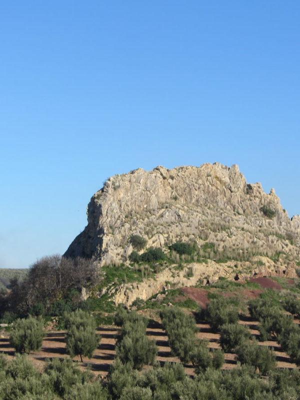 Delegación de Medio Natural de la Diputación de Córdoba, cuenta ya con 41 rutas señalizadas en la provincia