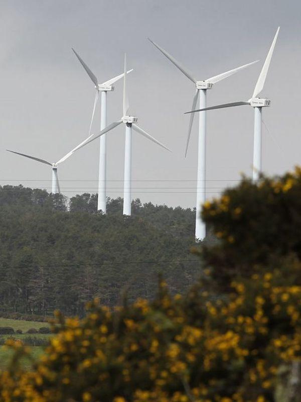 Asturias. No a los parques eólicos en zona de exclusión, como el proyectado en Cangas del Narcea