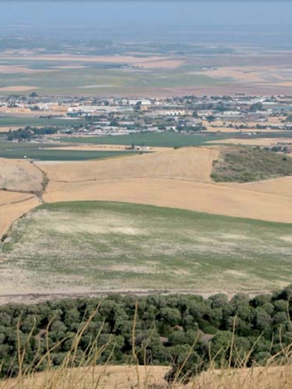 Por la conservación de la biodiversidad de las campiñas cantábricas