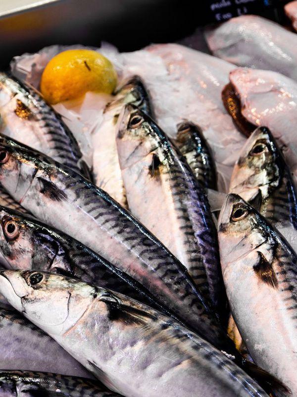 El pescado certificado en España aumenta el doble en un año
