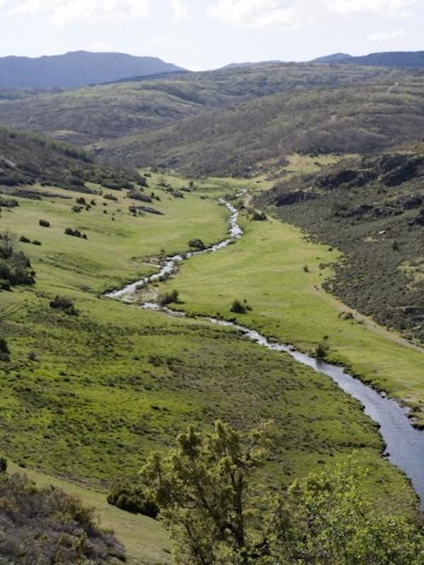 Referéndum para decidir si se implementa una salida del parque natural 'Sierra Norte de Sevilla'