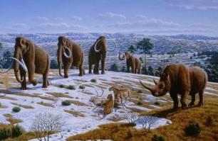 Cambios en el clima acabaron con la megafauna de Norteamérica