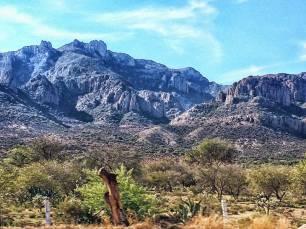 México avanza en la consulta pública del proyecto ANP Sierra de San Miguelito