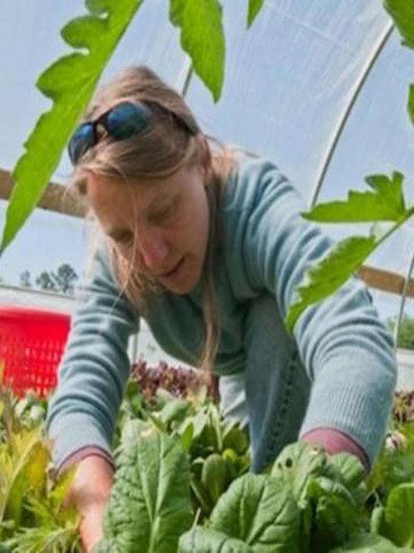 La producción de alimentos ecológicos crece de forma 'exponencial'