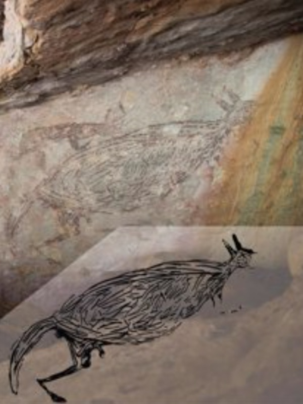 Un canguro de hace 17.300 año