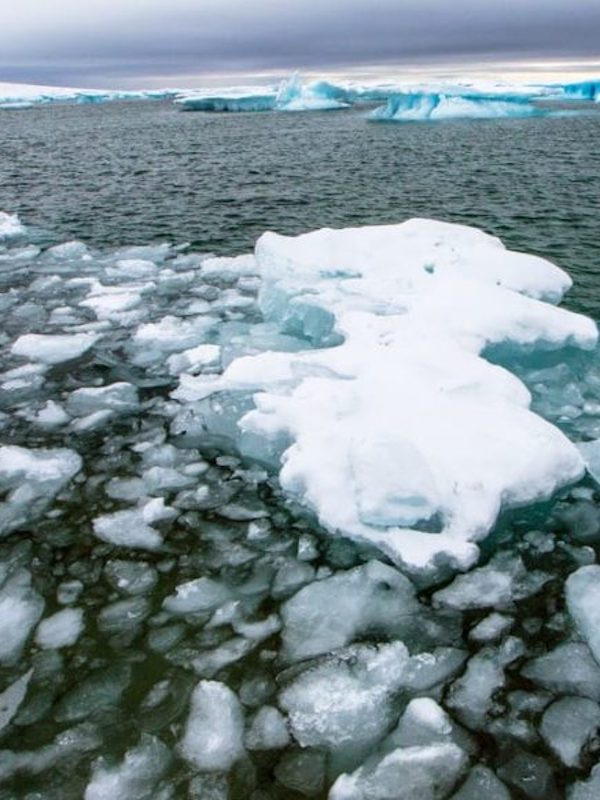 Al caer, un desborde masivo de agua dulce ártica en el Atlántico