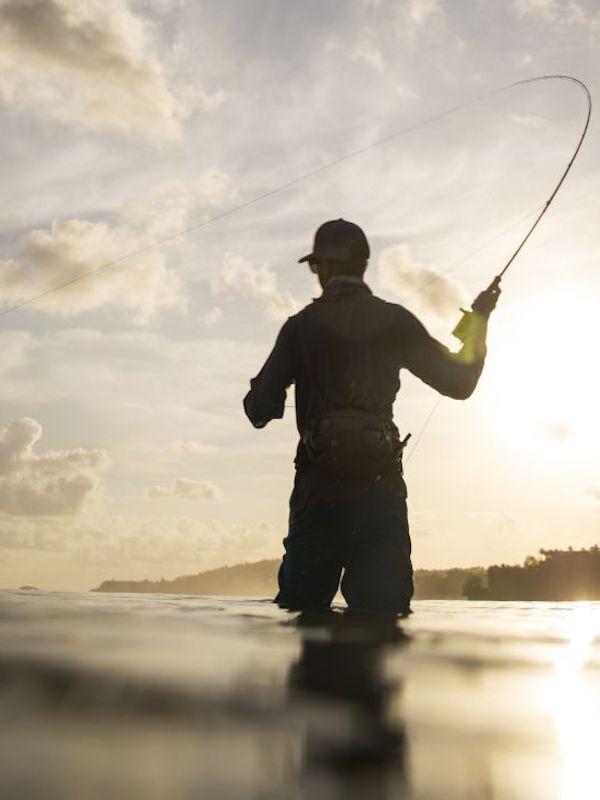 La Rioja defiende las restricciones impuestas a la caza y pesca