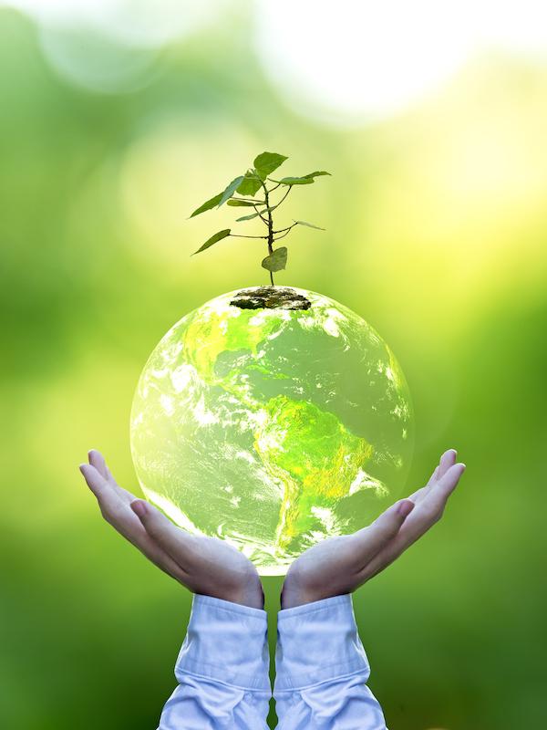 España quiere dar prioridad al desarrollo de la transición ecológica en la recuperación
