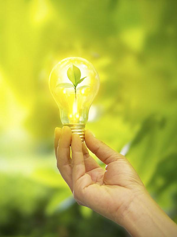 Sostenibilidad, Iberdrola, primera 'utility' de Europa en inversión en I+D
