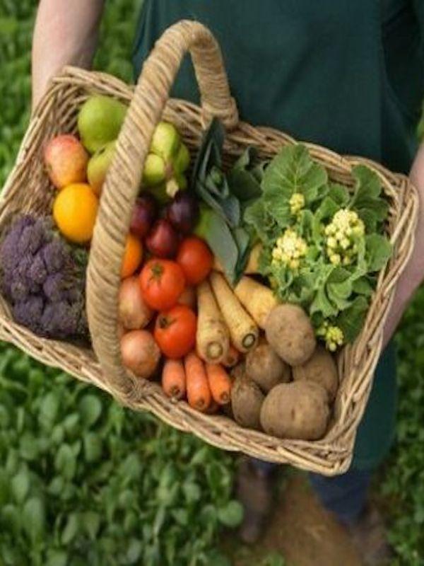 Alimentos y productos ecológicos: 'El signo de los tiempos'