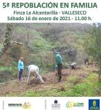 Canarias. Valleseco acoge el sábado 16 de enero una repoblación forestal en la Finca La Alcantarilla