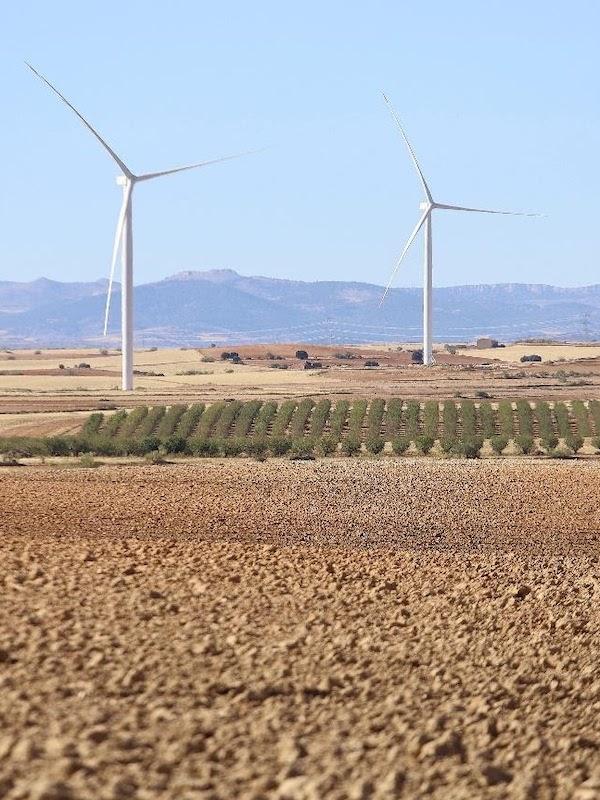 Forestalia: apostando por la transición energética