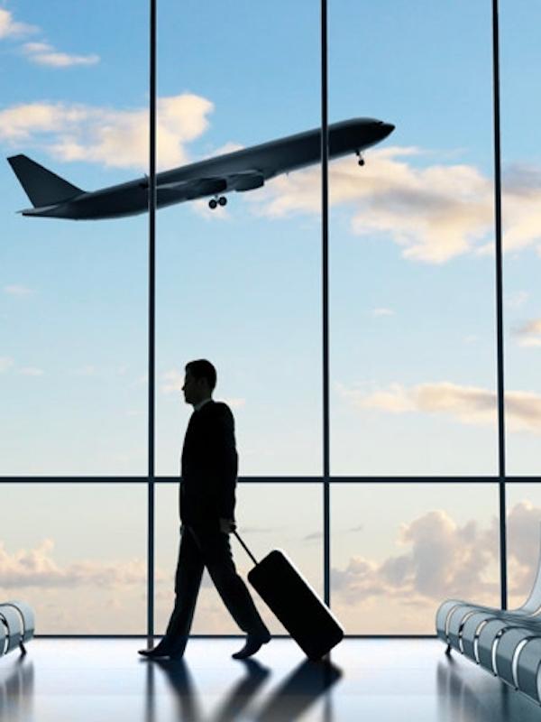 ¿Comer carne o viajar en avión?