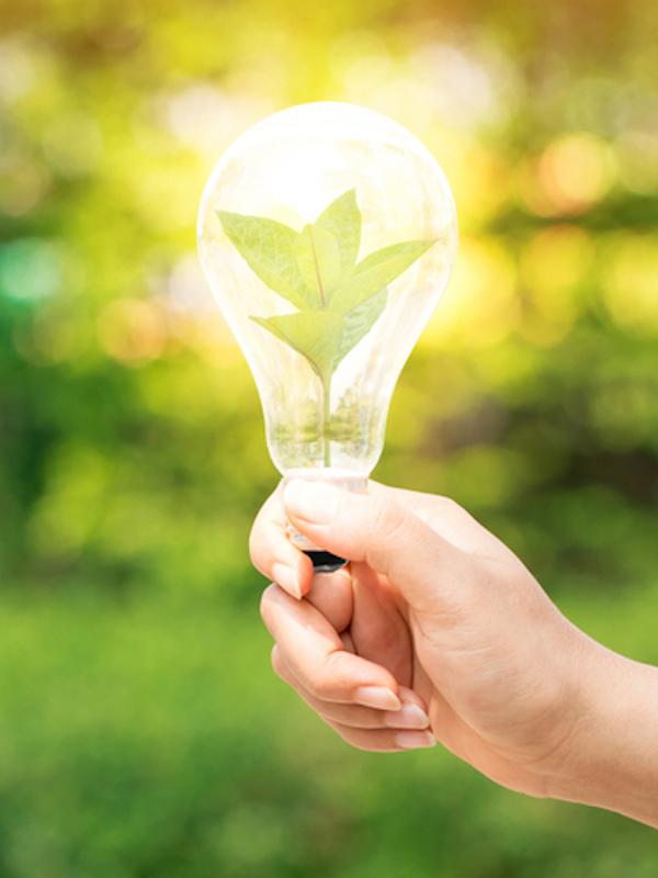 Cantabria. Industria financia un proyecto de eficiencia energética de Formaspack