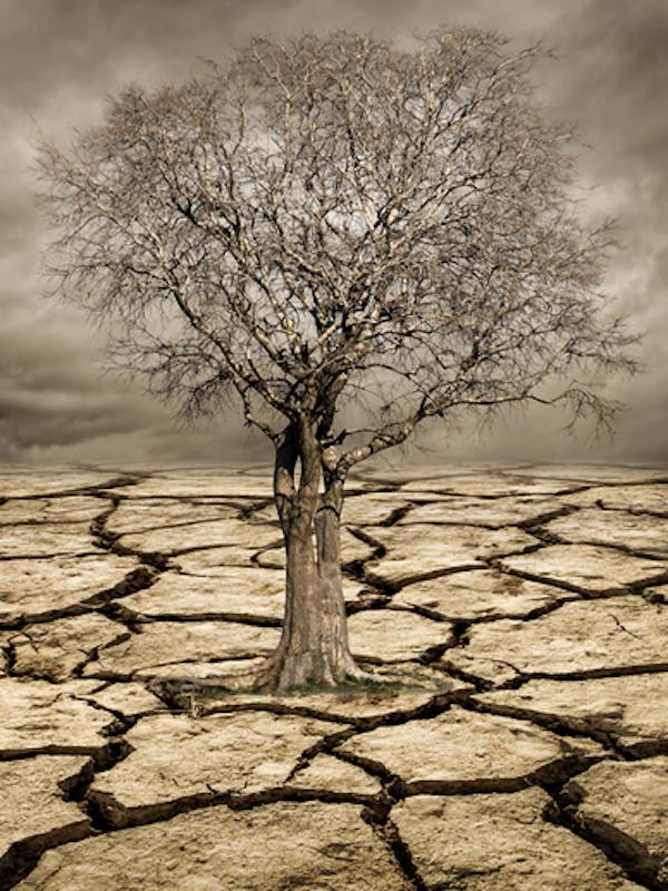 Equo presiona al Gobierno para mejorar la ley de Cambio Climático