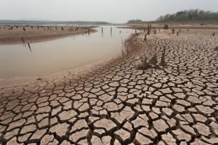 Calentamiento global y desnutrición, todas las 'claves'
