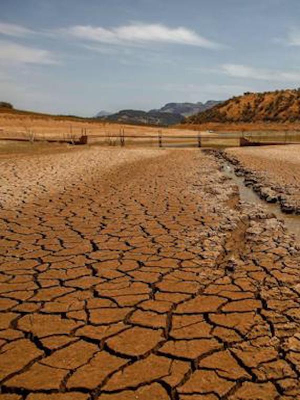 Paleontología y astrofísica 'vitales' para predecir el cambio climático
