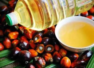 El papel en la 'Declaración de Amsterdam' vs el aceite de palma