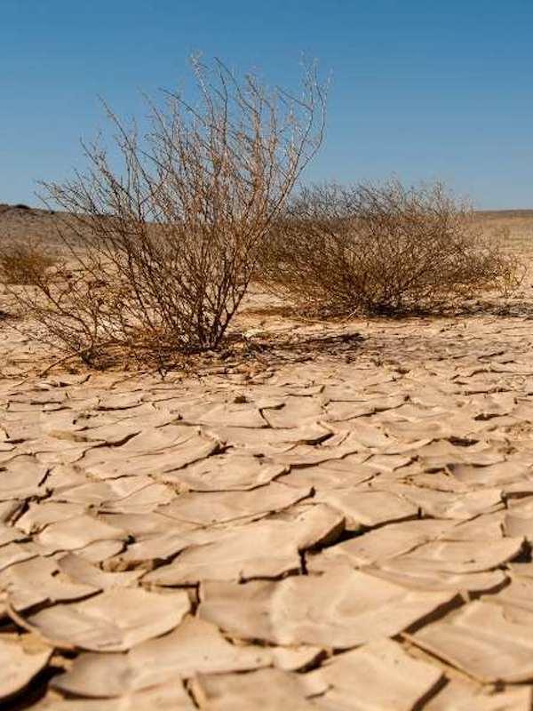 Tratar informativamente el calentamiento global y su consiguiente 'crisis' a debate