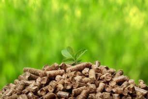 Europa que la biomasa es una alternativa de presente y futuro