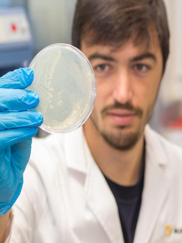 AIMPLAS desarrolla envases compostables, procesos de biodegradación mediante bacterias y una calefacción sostenible con apoyo de la AVI