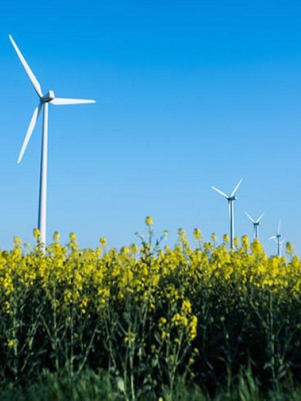 Feníe Energía, energía 100% renovable y su ambicioso objetivo hasta 2023