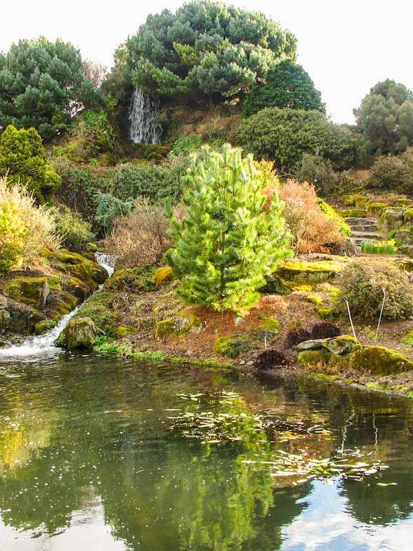 El Real Jardín Botánico pierde visitas