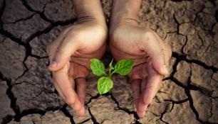 La sequía afectará negativamente a las regiones propensas a la inseguridad alimentaria