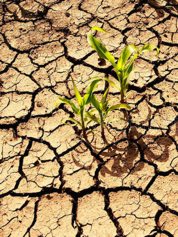 Navarra medirá el calentamiento global