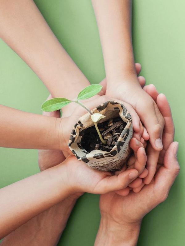 Galicia. Sogama conmemora el Día Mundial de la Educación Ambiental con una visita virtual a su complejo industrial de Cerceda