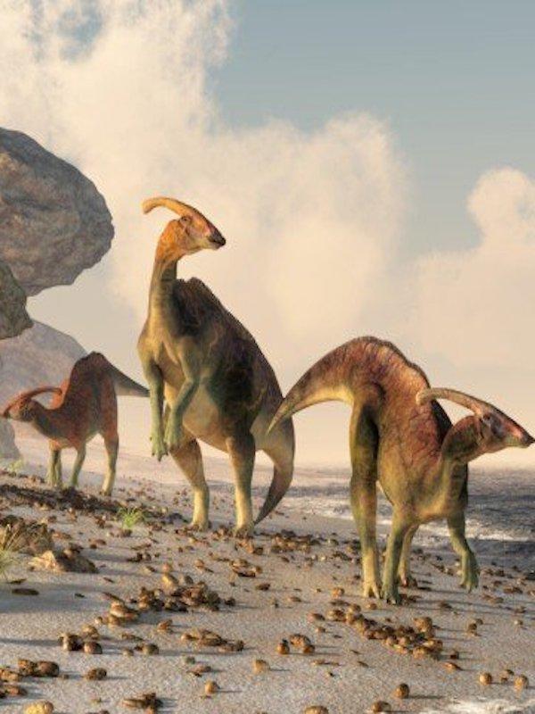 Parasaurolophus muestra su auténtico aspecto gracias a un nuevo fósil