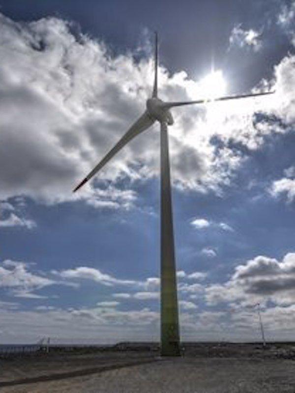 Greenalia consigue en la subasta 135 MW de energía eólica