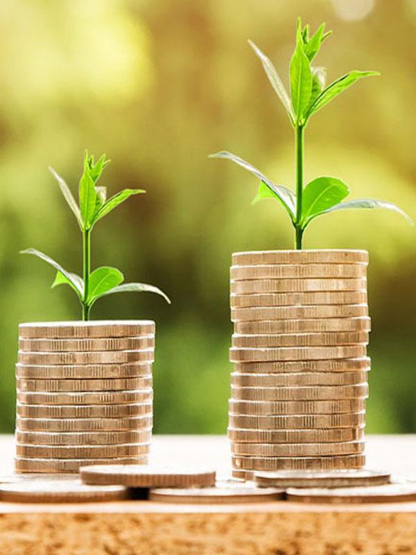 Afirman que la economía verde generará millones de puestos de trabajo