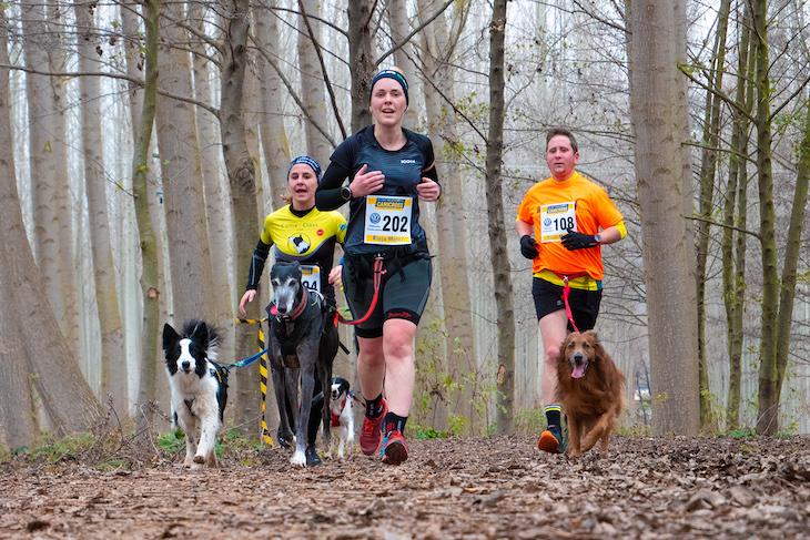 Deporte 'sano' y tu mascota