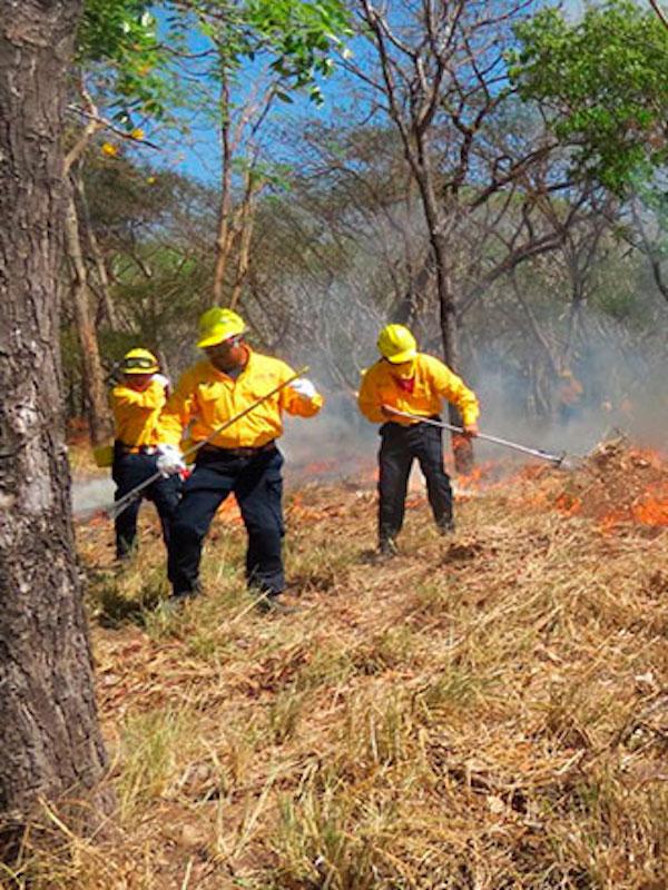 México. Honran a los más de 20 mil combatientes del fuego forestal del país