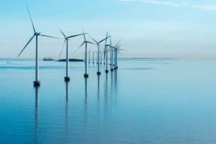 A vueltas con el 'absurdo debate' entre la energía eólica y los ecosistemas marinos