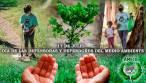 Castilla – La Mancha celebra el 17 de julio el 'Día del Defensor del Medio Ambiente'