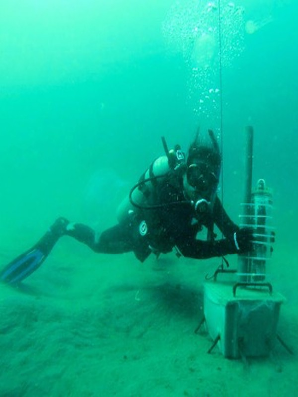 La navegación afecta negativamente a la estructura acústica de los silbidos de los delfines
