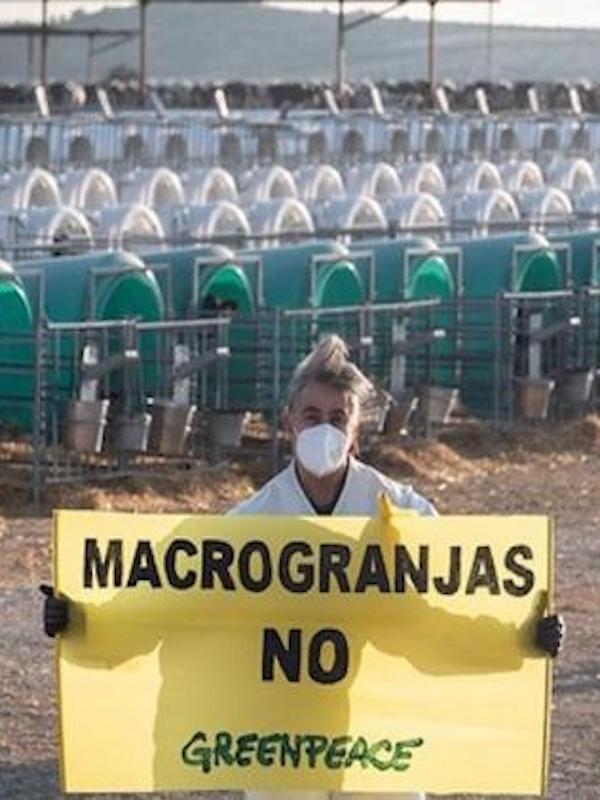 La moratoria parcial a la ganadería industrial en Cataluña