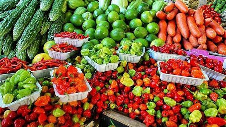 ¿Por qué consumir verduras y frutas ecológicas y de temporada?
