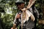 Ecuador. En la Reserva de Mashpi se han descubierto dos nuevas especies de flora