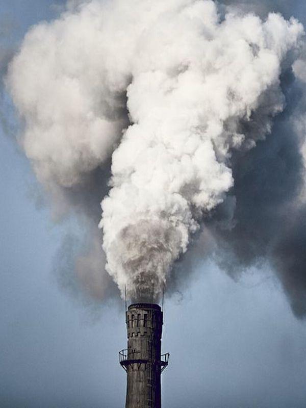 Ley para compartir el beneficio del coste del CO2 entre todos los consumidores