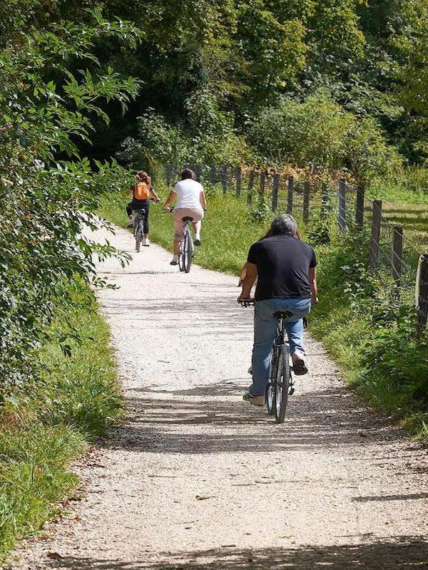 Día Mundial de la Bicicleta 2021