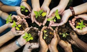 Dos instituciones españolas se suman a la iniciativa 'El Decenio de la ONU para la Restauración de los Ecosistemas'