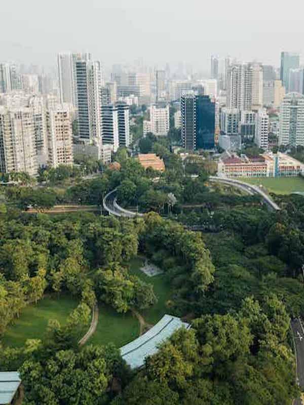 Una ciudad verde y saludable a propósito del Día Mundial del Medio Ambiente 2021