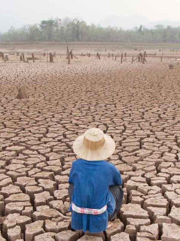 Día mundial del medio ambiente 2021,  más de 3.000 millones de personas vulnerable víctimas de la degradación del Planeta
