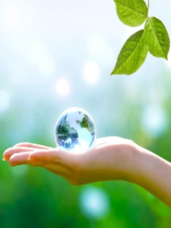UOC y Erasmus+ buscan reducir el impacto ambiental de los viajes de proyectos internacionales
