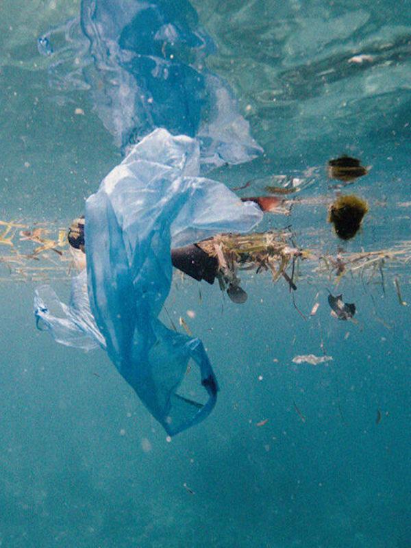 Origen y composición de la basura vertida en el océano, el informe definitivo
