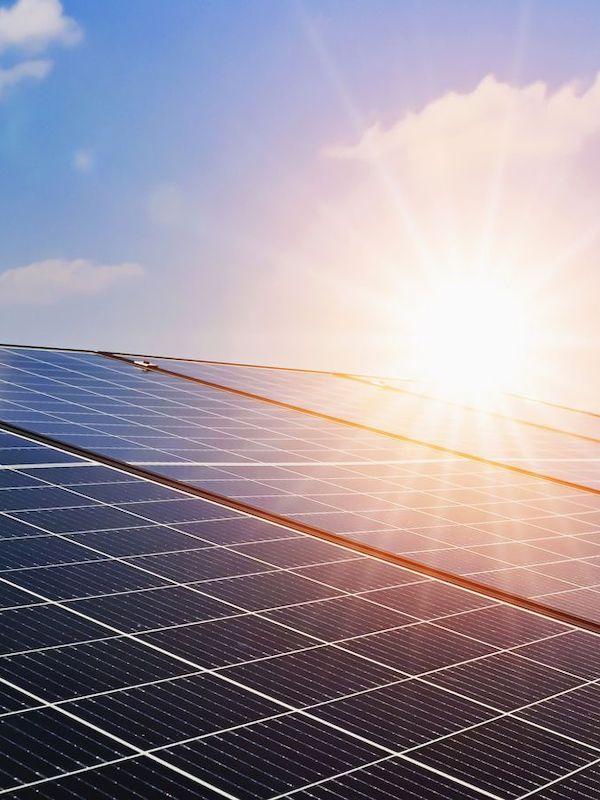 ANPIER avisa de las consecuencias del desorden en la instalación de macro parques fotovoltaicos